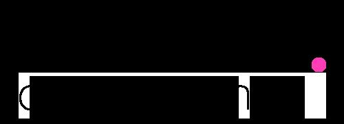 Roberta Logo Black 500
